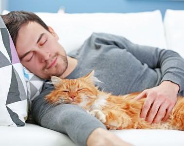 Kuscheln mit der Katze: Für Tierhaarallergiker kann dies äußerst unangenehme Folgen haben. Foto: djd/allergostop.de/Africa Studio - Fotolia